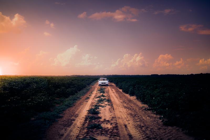 Tips Jalan-Jalan Ke Jember Untuk Anda Yang Ingin Liburan