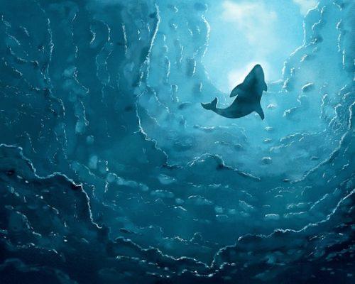 Beberapa Negara Yang Rutin Berburu Ikan Paus